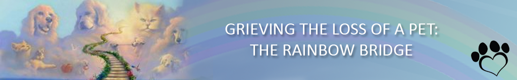 Grieving the Loss of a Pet: The Rainbow Bridge