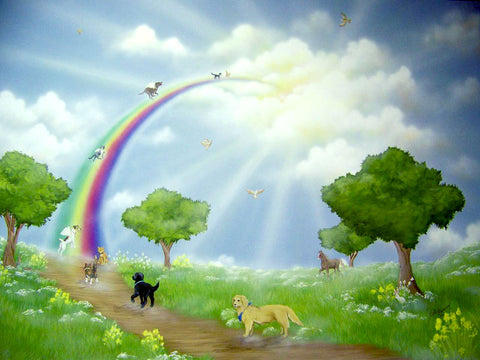 grieving with loss of a pet - rainbow bridge poem