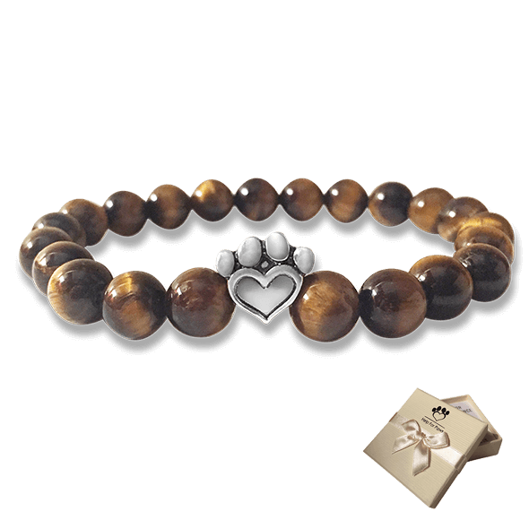 Help For Paws Bracelet In Brown