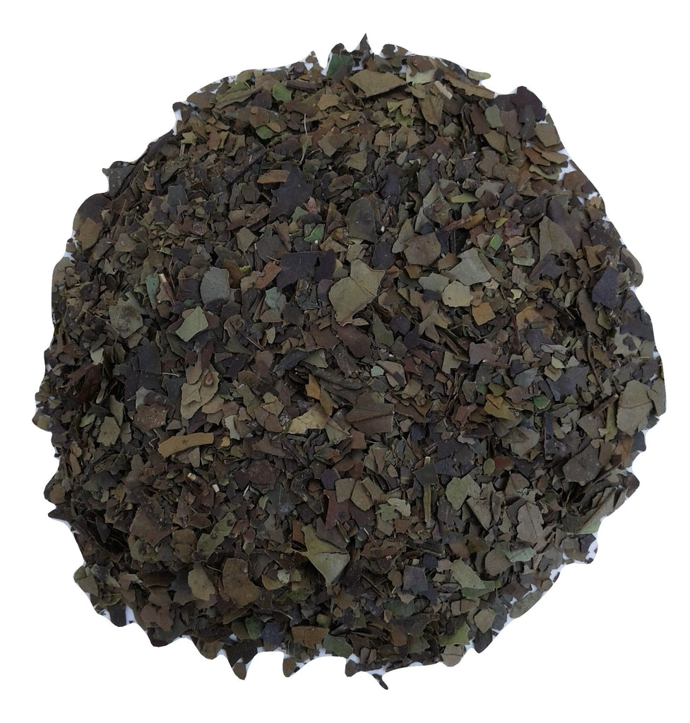 organic guayusa herbal tea. ecuador