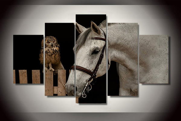 Owl and White Horse 5 Piece Art Canvas