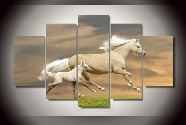 Prarie White Horses Art Canvas