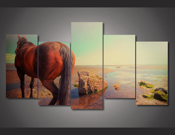 Horse In the Drought 5 Piece Art Canvas