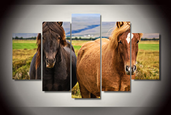 Two Horses on the Field 5 Piece Art Canvas