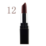 High Quality 12 Colors Lipsticks 3G Brand Makeup Long-lasting Matte Lipstick Purple Pink Red Vampire Professional Party