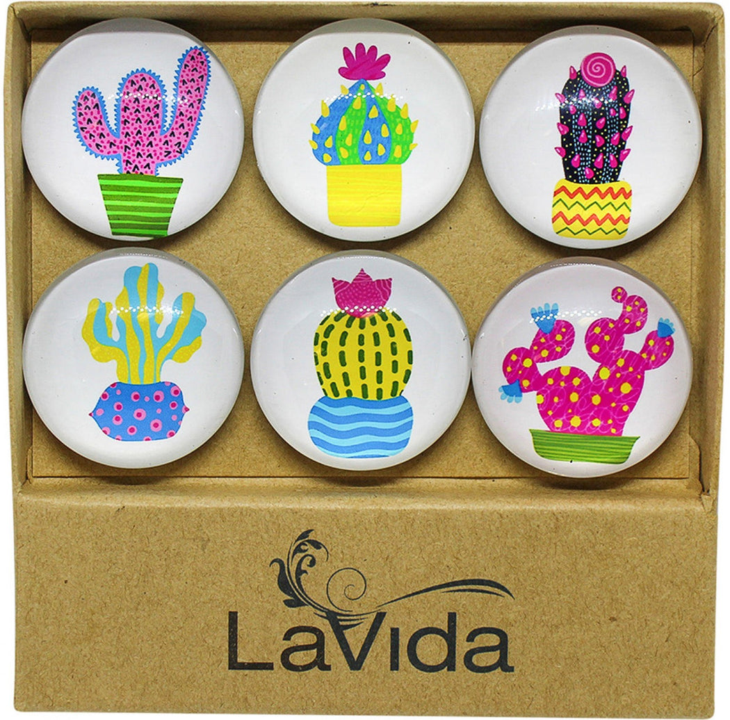 Glass Magnets Colourful Cacti S/6