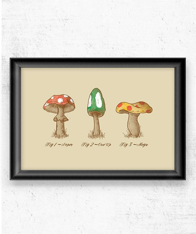 Mariomycology Posters by Dianne Delahunty - Pixel Empire
