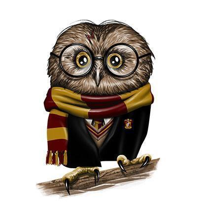 Owly Potter Hoodies by Vincent Trinidad - Pixel Empire