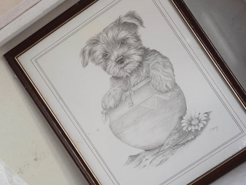 Framed Print by C Varley Small Dog in Flowerpot