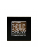 City Color Bold Brow Kit Medium to Dark