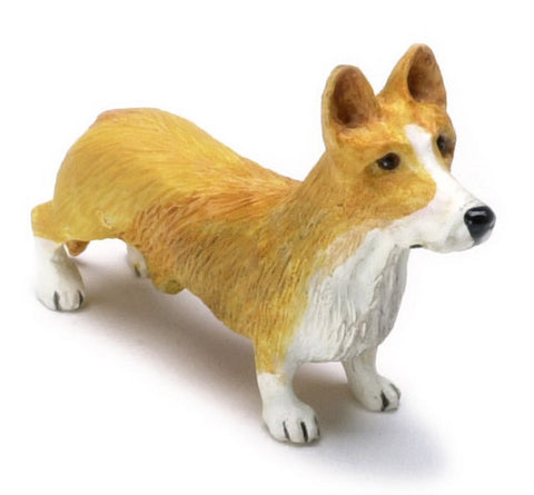 Pembroke Welsh Corgi, Red and White