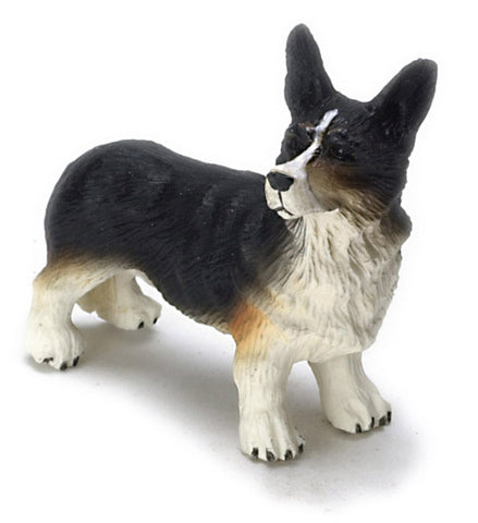 Cardigan Welsh Corgi with Parti Colors