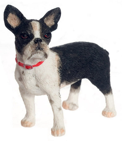 Boston Terrier OUT OF STOCK
