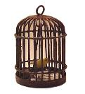Rustic Bird Cage with Canary
