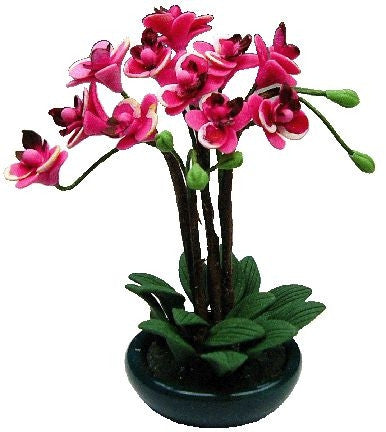 Pink Orchid Arrangement in Bowl