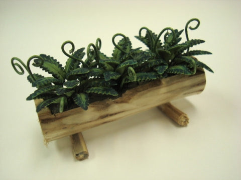 Log Planter with Ferns
