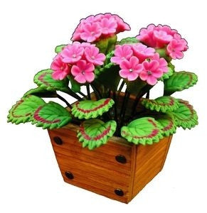 Geranium, Small Wooden Planter, Pink