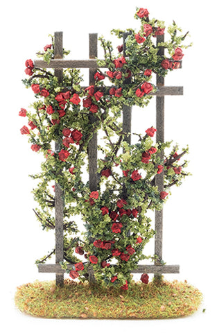 Trellis, Red Rose