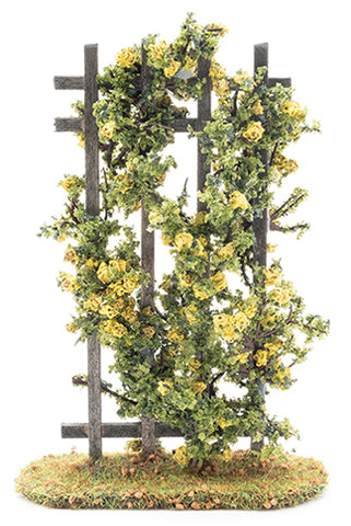Trellis, Yellow Rose