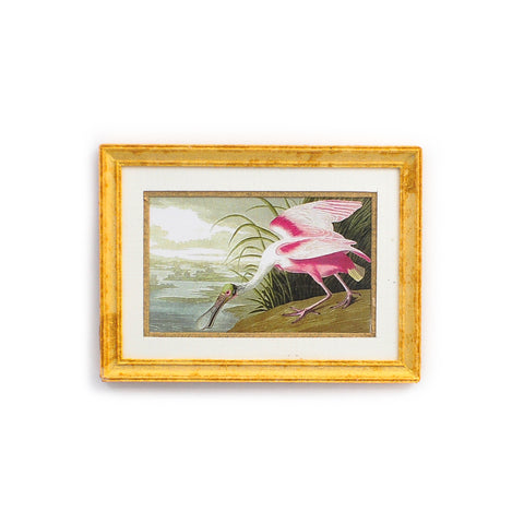 Framed and Matted Roseate Spoonbill