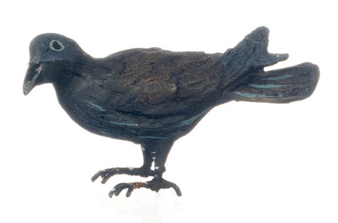 American Crow Back In Stock