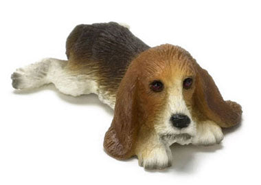 Basset Hound, Laying Down