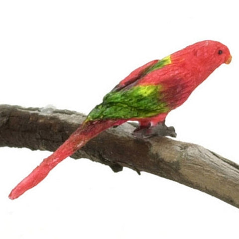 Chattering Lory Bird