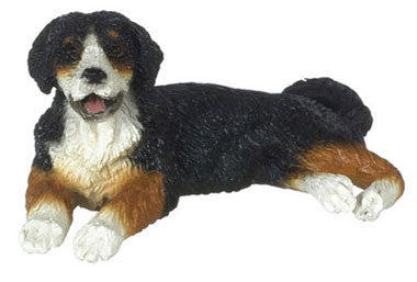 Burmese Mountain Dog
