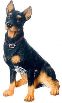 Dog, Doberman Pinscher