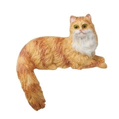 Tabby Cat, Orange and White, Tail Hanging