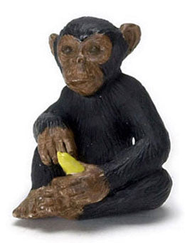 Chimpanzee with Bannana