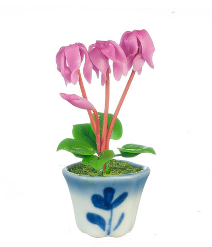 Cyclamen in Pot, Lavender