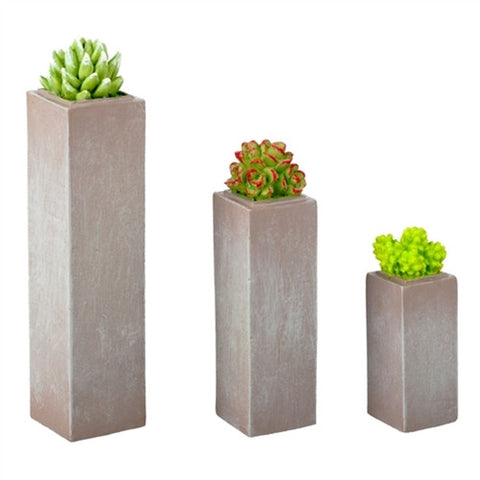 Succulents in Tall Planters, Set of Three