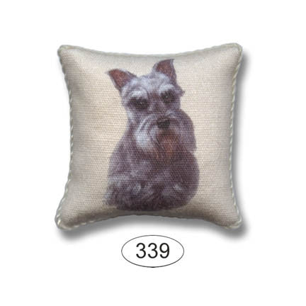 Pillow, Dog, Schnauzer