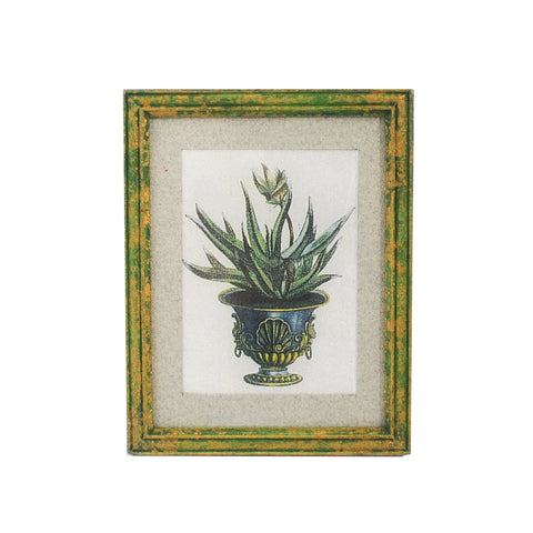 Framed Flower in Urn Print