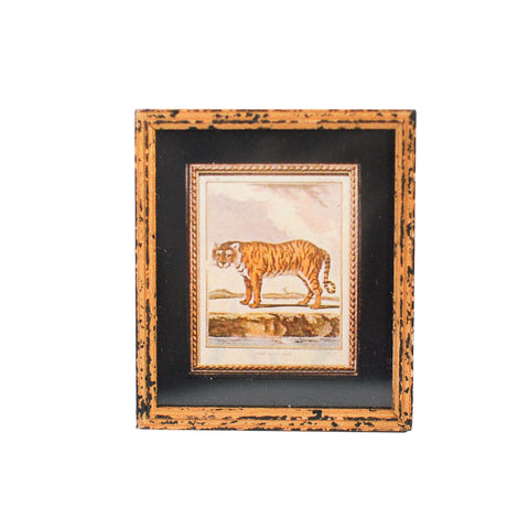 Print, Framed and Matted Tiger