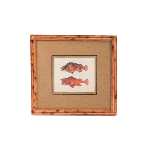 Fish Print B, Matted and Framed