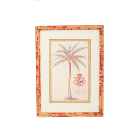 Framed Print with Palm Tree