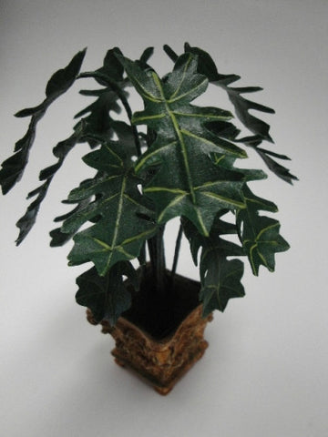 Tree Philodendron by Steve Costanza OUT OF STOCK