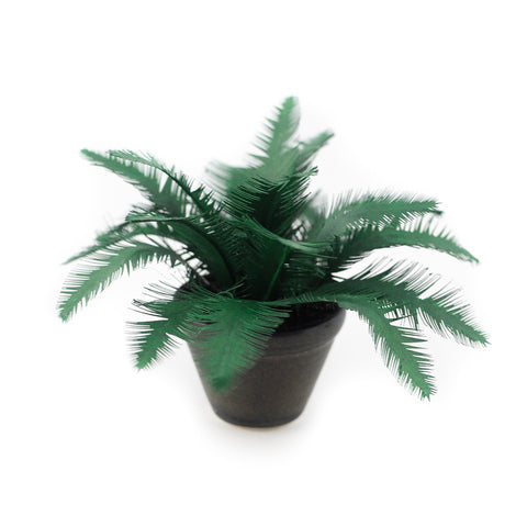 Potted Palm, Large Black Planter