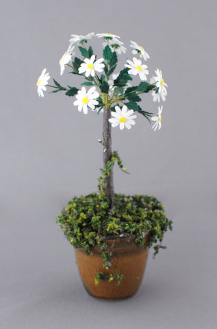 Daisy Topiary Tree by Paula Gilhooley