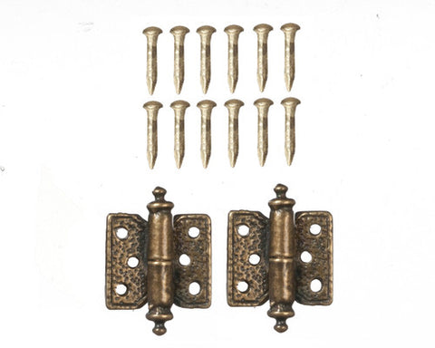Antique Brass Hinges with 12 Pins