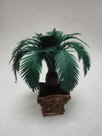 Tropical Cycad by Steve Costanzo