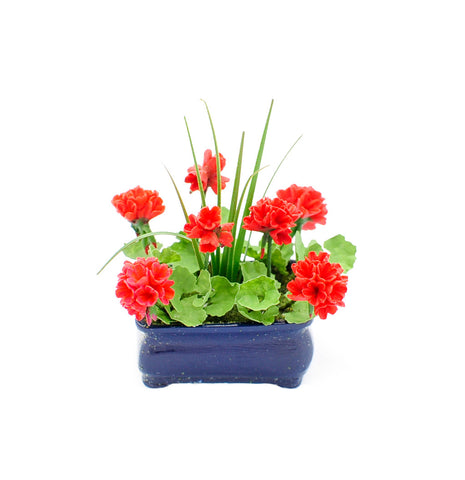Red Geraniums in Oblong Planter