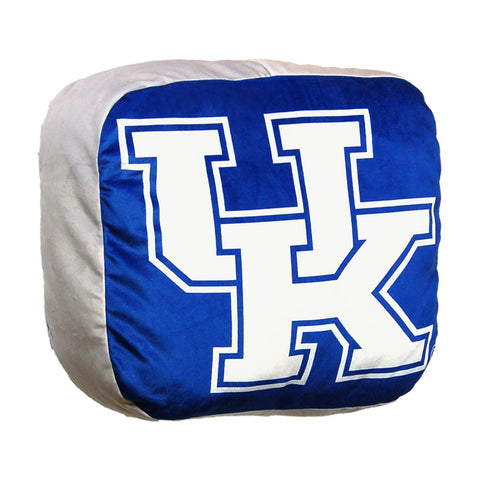 Kentucky Wildcats Ncaa 15in Cloud Travel Pillow