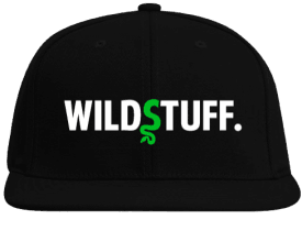 WildStuff Dad Cap