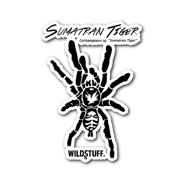 Sumatran Tiger Decal