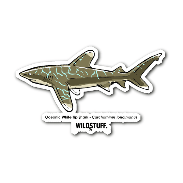 Oceanic White Tip Shark Decal