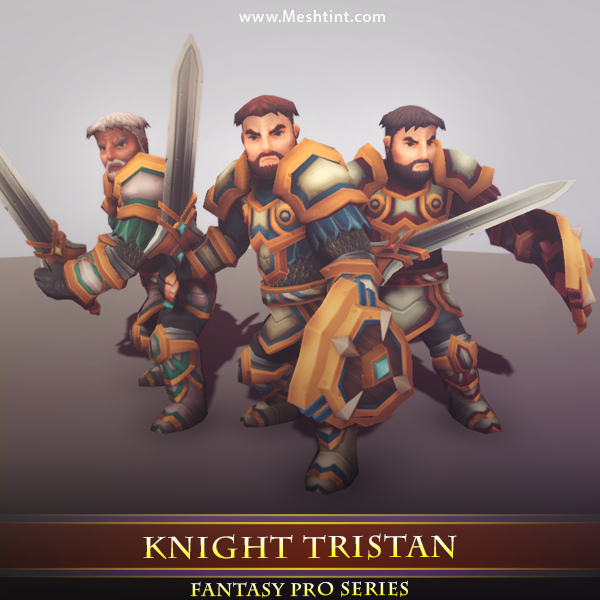 Knight Tristan 1.2 Mesh Tint Shop3DSA Unity3D Game Low Poly Download 3D Model