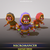 Necromancer - Mesh Tint - Shop3DSA - Unity - 3D - Game - Low - Poly - Model - Animation